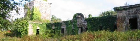 Pazo e Torre de Guimarei
