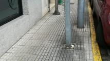 Rúa Pérez Viondi