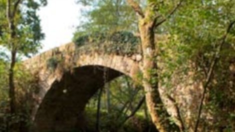 ponte liñares